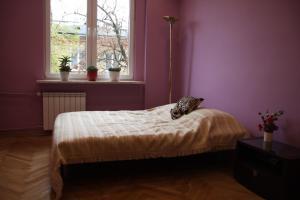Rokosowska ParaMi, Apartmanok  Varsó - big - 8