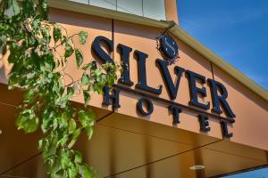 Отель Сильвер - фото 8
