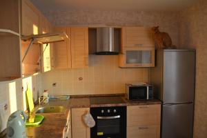 Апартаменты Red Cat - фото 7