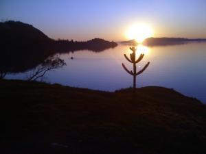 Lago Ranco Parque El Morro