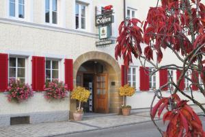 Hotel-Restaurant Roter Ochsen