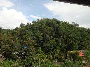 Sherenes Homestay, Privatzimmer  Kandy - big - 7
