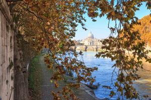 Vatican Domus, Guest houses  Rome - big - 40