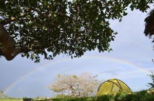 obrázek - Paraíso do Caju Camping