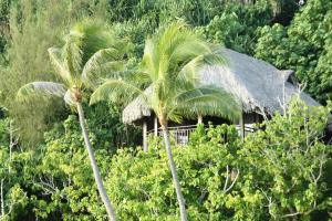 Sofitel Bora Bora Private Island, Hotely  Bora Bora - big - 10