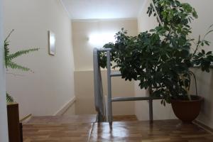 Отель Квант - фото 14