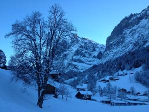 Locherboden - Apartment - Grindelwald