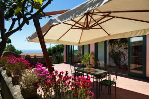 Villa Eugenia, Villas  Sant'Agnello - big - 18