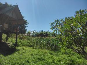 Swan Pakaran Guest House, Penzióny  Pai - big - 12