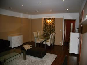 Apartmán Dr. Engla, Apartmány  Karlovy Vary - big - 8