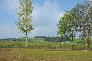 Petit coin de paradis, Vily  Somme-Leuze - big - 6