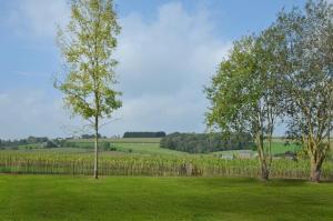 Petit coin de paradis, Vily  Somme-Leuze - big - 9