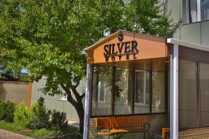 Отель Сильвер - фото 2