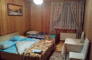 Отель Гостевой дом - фото 26
