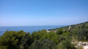 Villa Mira, Vily  Primošten - big - 11