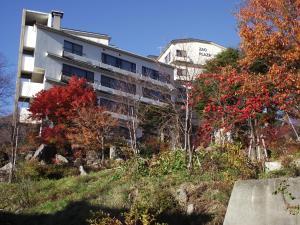 Фото отеля Zao Plaza Hotel