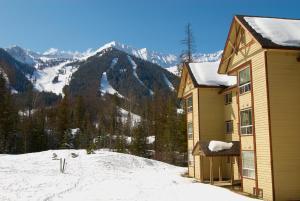 Timberline Lodge - Silver - Apartment - Fernie