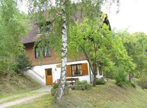 Steinbishof