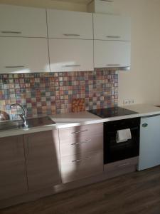 Centro apartamentai - Vingio apartamentai, Apartments  Vilnius - big - 2