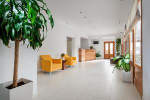Anamnesis City Spa, Apartmanhotelek  Fíra - big - 44