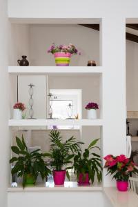 Luxury Apartment Paulina, Ferienwohnungen  Dubrovnik - big - 24