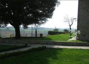 Apartment in Castelnuovo Berardenga XIV
