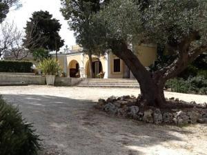 Villa Letizia, Виллы  Мартина-Франка - big - 9