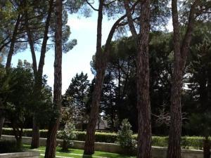 Villa Letizia, Виллы  Мартина-Франка - big - 10