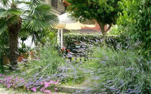 A Touristic House, Prázdninové domy  Montegrotto Terme - big - 21