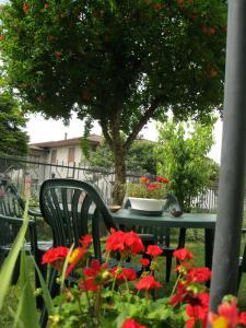 A Touristic House, Prázdninové domy  Montegrotto Terme - big - 10