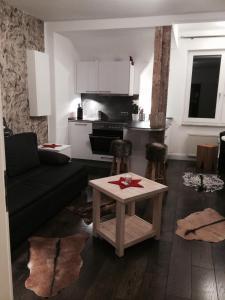 Ferien Suite Braunlage, Apartmány  Braunlage - big - 31