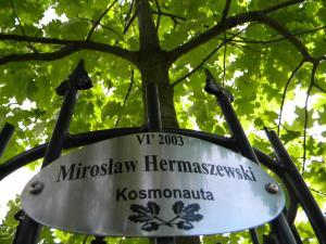 Hotel Kosmonauty Wrocław-Airport, Hotel  Breslavia - big - 44
