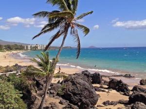 obrázek - Maui Vista Vacation Condo