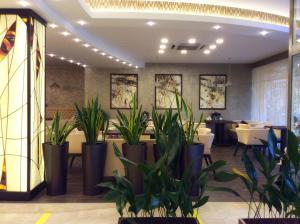 Отель Сочи-Магнолия - фото 22