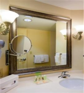 Holiday Inn Chantilly-Dulles Expo Airport, Hotely  Chantilly - big - 6
