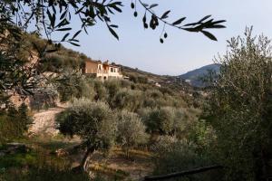 Agriturismo Le Rocche, Ville  Imperia - big - 35