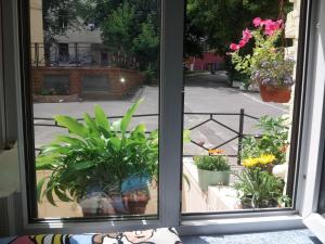 Романтические апартаменты в центре Киева - фото 24