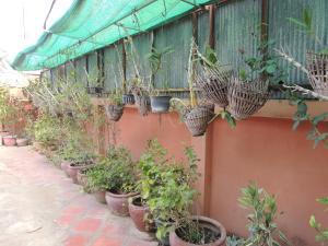 Malis Rout Guesthouse, Pensionen  Prey Veng - big - 23