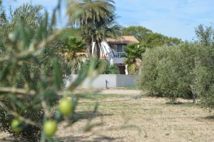 Es Pas Formentera Agroturismo, Vidiecke domy  Es Calo - big - 136