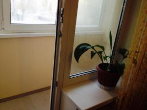 Апартаменты На Ленина - фото 10