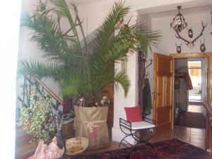 Romantik-Villa LebensART, Apartments  Reichenfels - big - 52
