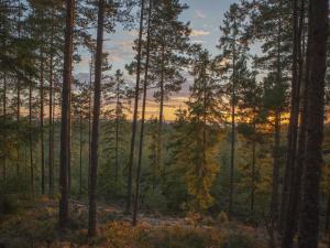 Hamgården Nature Resort Tiveden, Case di campagna  Tived - big - 4