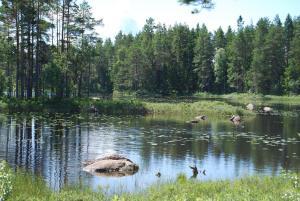 Hamgården Nature Resort Tiveden, Case di campagna  Tived - big - 5