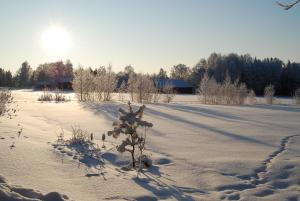 Hamgården Nature Resort Tiveden, Case di campagna  Tived - big - 6