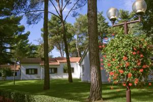 Apartments Laguna Galijot, Апартаменты  Пореч - big - 19