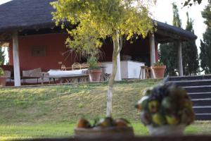 Hacienda La Indiana, Penzióny  Los Palacios y Villafranca - big - 16