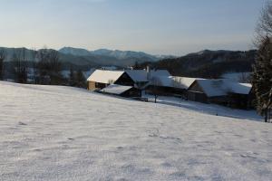 Hirmhof, Agriturismi  Reinsberg - big - 23