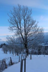 Hirmhof, Agriturismi  Reinsberg - big - 28