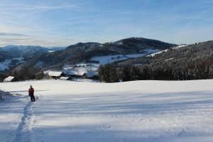 Hirmhof, Agriturismi  Reinsberg - big - 44