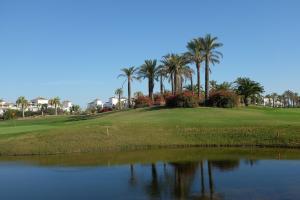 Coming Home - Penthouses La Torre Golf Resort, Apartmány  Roldán - big - 23